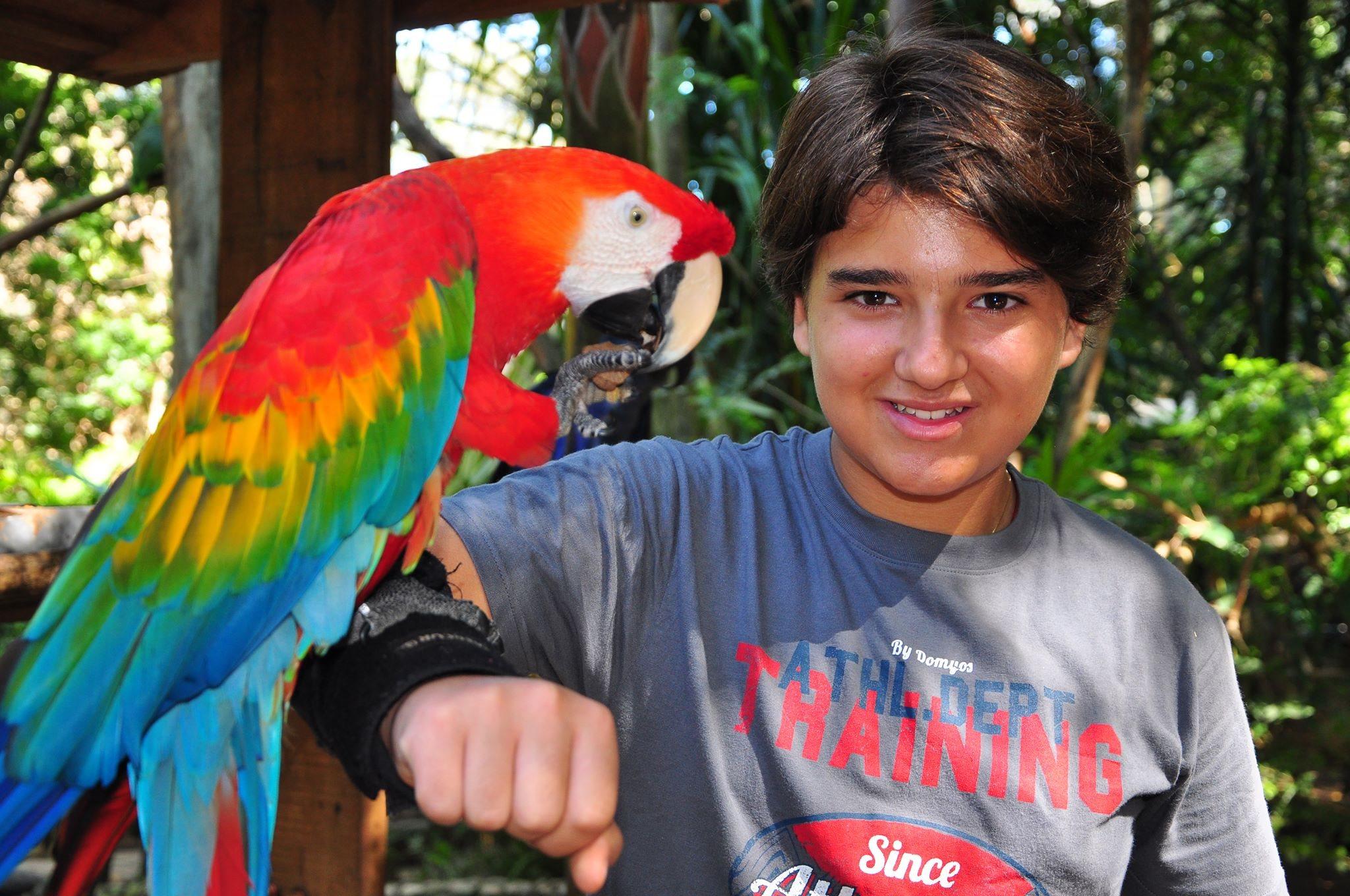 Photo of Nicholas Torres, um talento desde pequeno