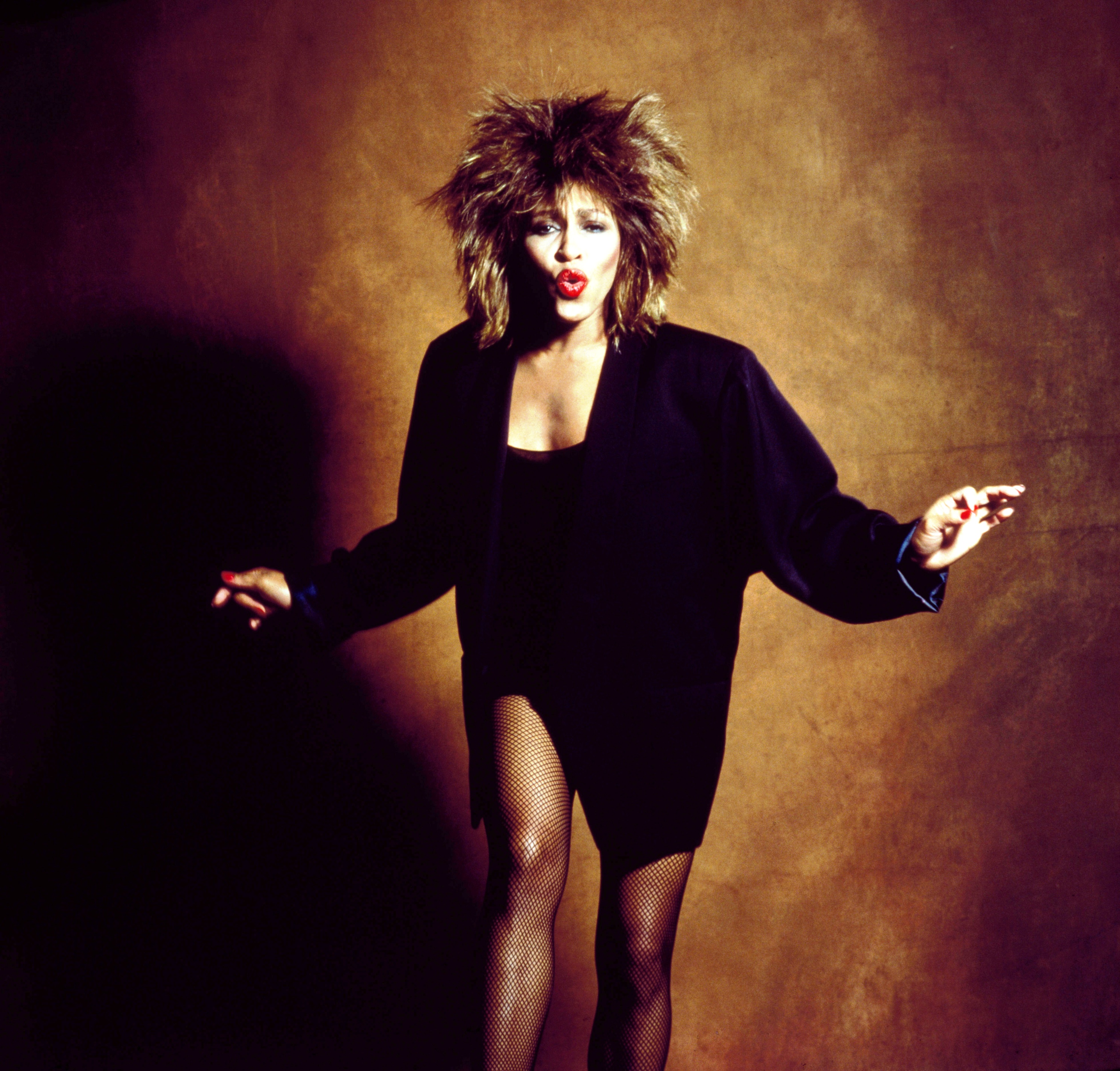 Tina Turner by Lord Snowdon ca. 1985