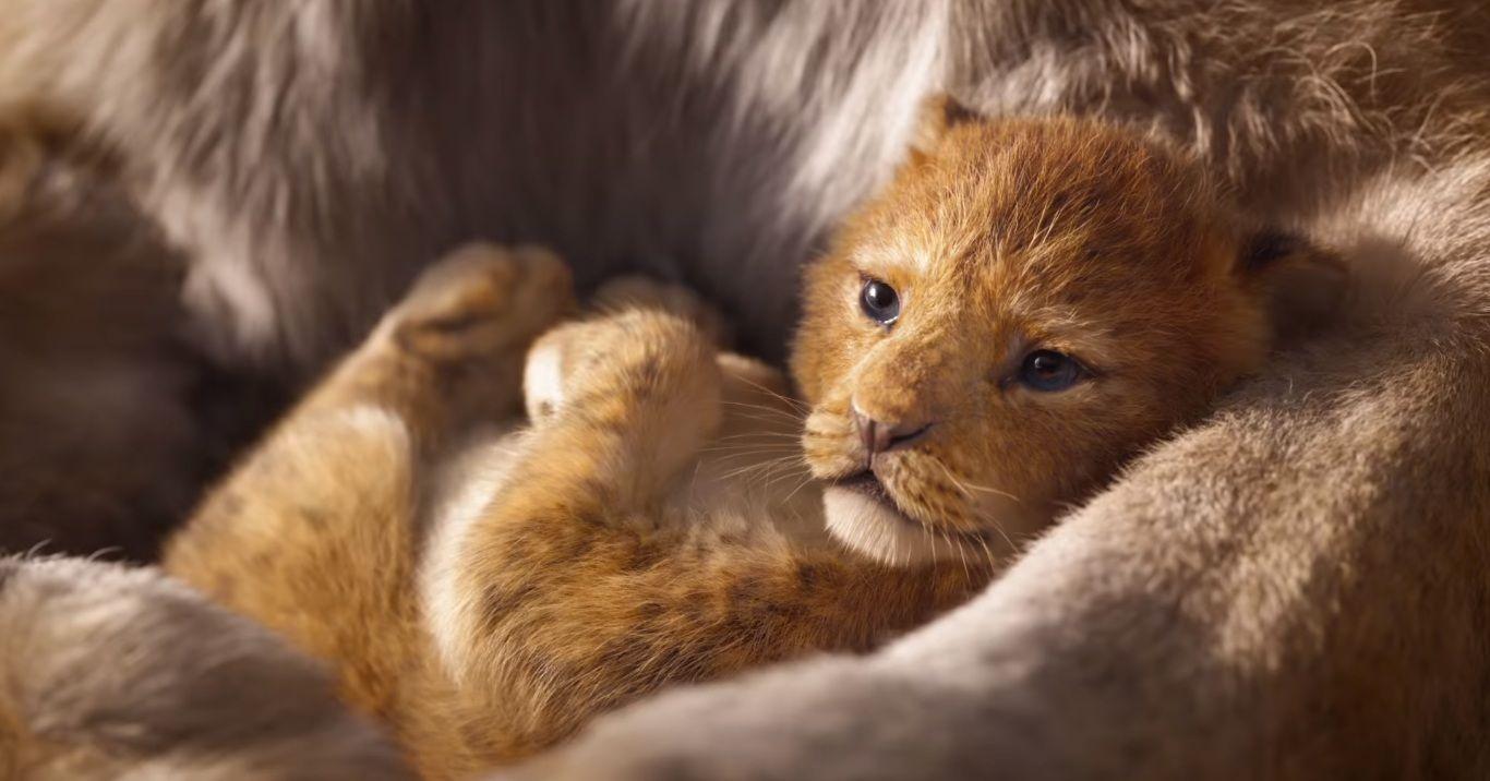 """Photo of Disney divulga novo trailer da versão live-action de """"O Rei Leão"""" com todos os personagens"""